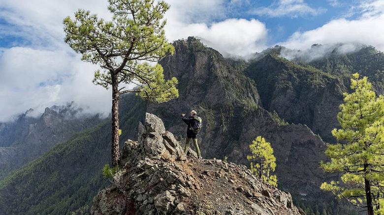 El Bosque de los Tilos: senderismo en La Palma