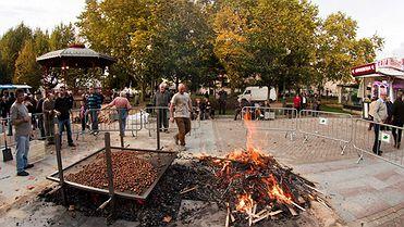 El Magosto en Galicia: tradición de castañas, vino y fuego