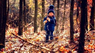 Consejos para ir con niños al bosque