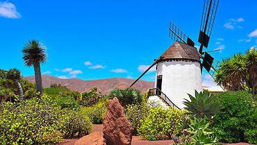 Viaje por la Fuerteventura de Miguel de Unamuno