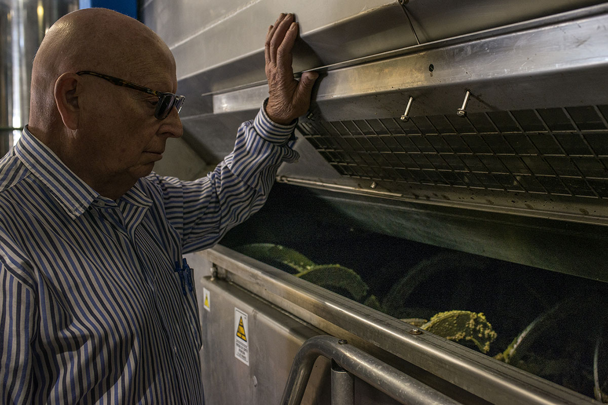 Felipe Castro es el auténtico maestro de la almazara y el olivar.