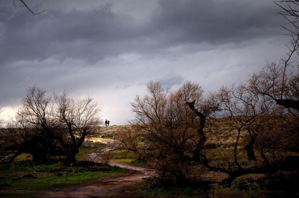 El humedal de llanura más importante de España.
