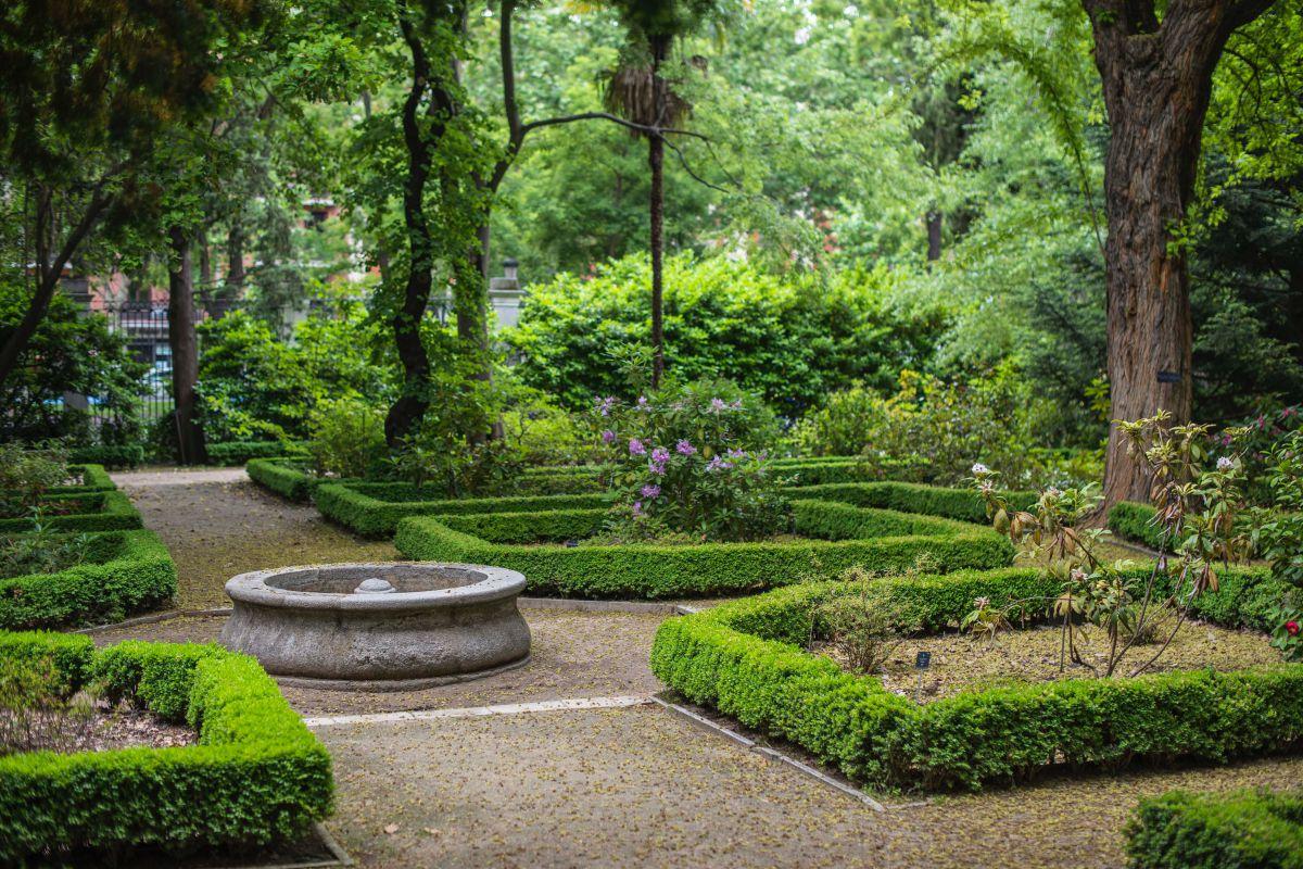 Vista del interior del Real Jardín Botánico de Madrid.