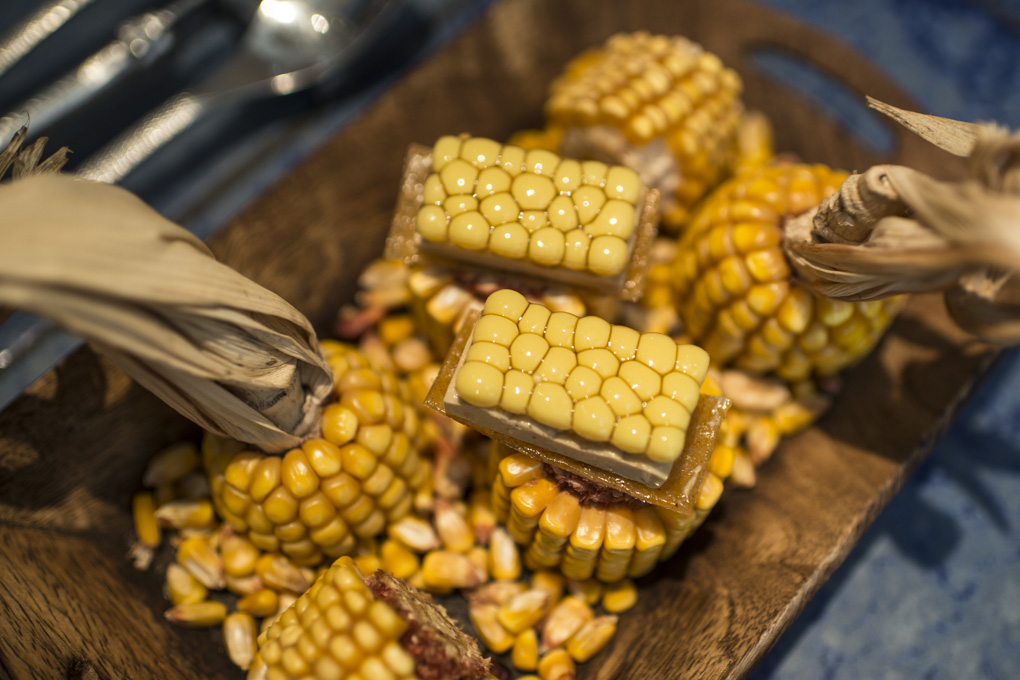 presentación entre mazorcas del multiesférico de maíz