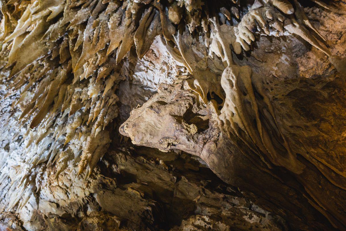 Una cara de dragón entre las formaciones de la Cueva de Masero, en las Cuevas de Fuentes de León, en la provincia de Badajoz.