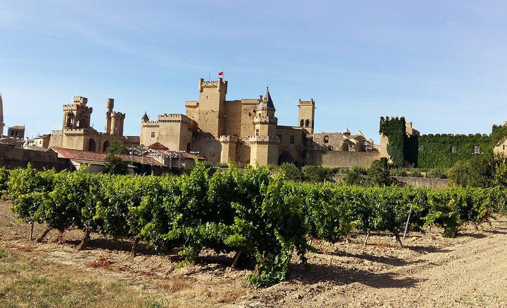 Panorámica del Palacio de Olite en tierra de viñedos