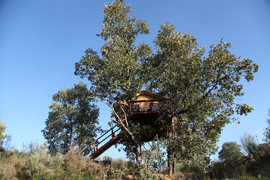 Una de las tres cabañas, 'Brisa', vista desde abajo. Foto: dormirenlosarboles.es