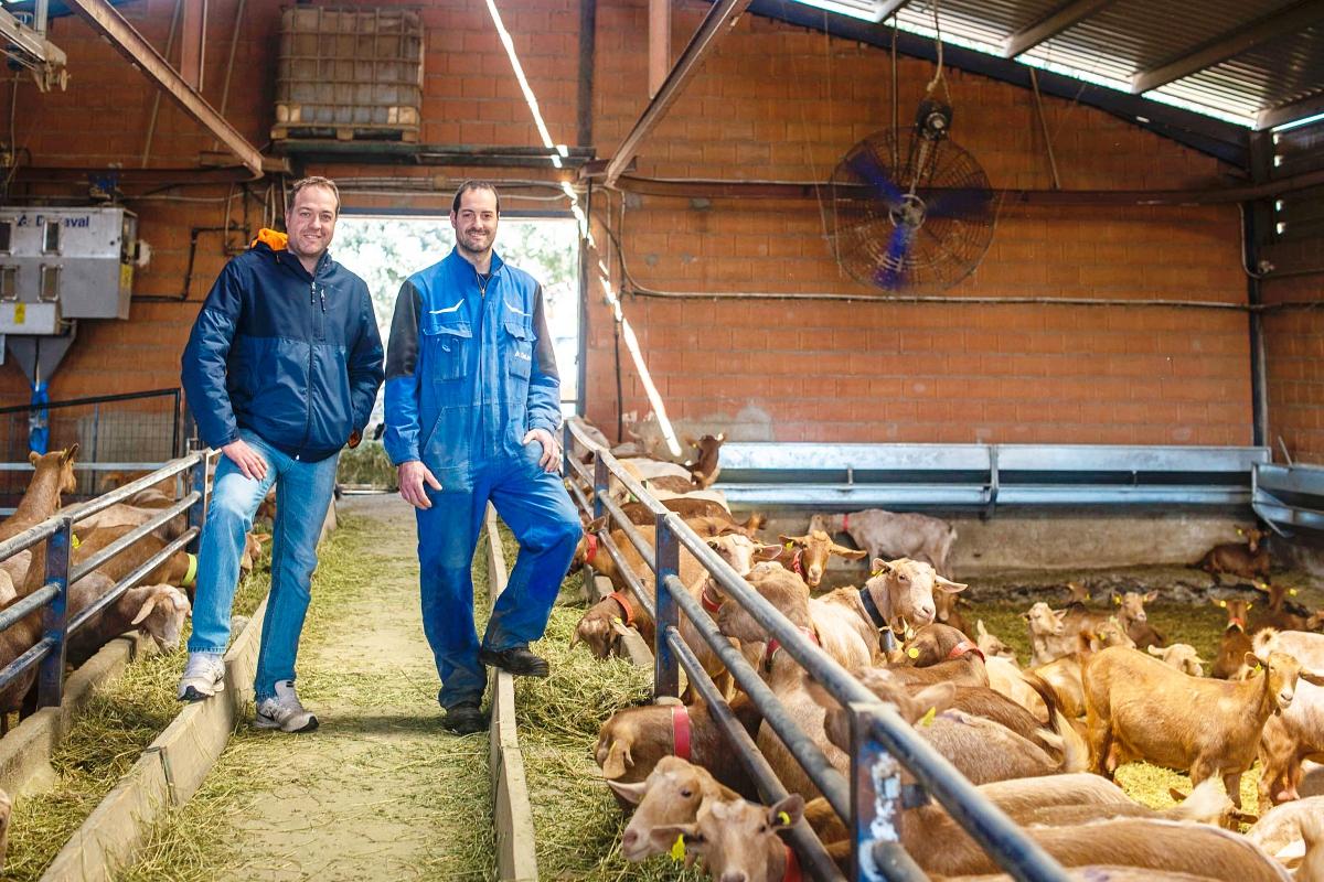 Paco y Jesús en la granja con sus cabras.
