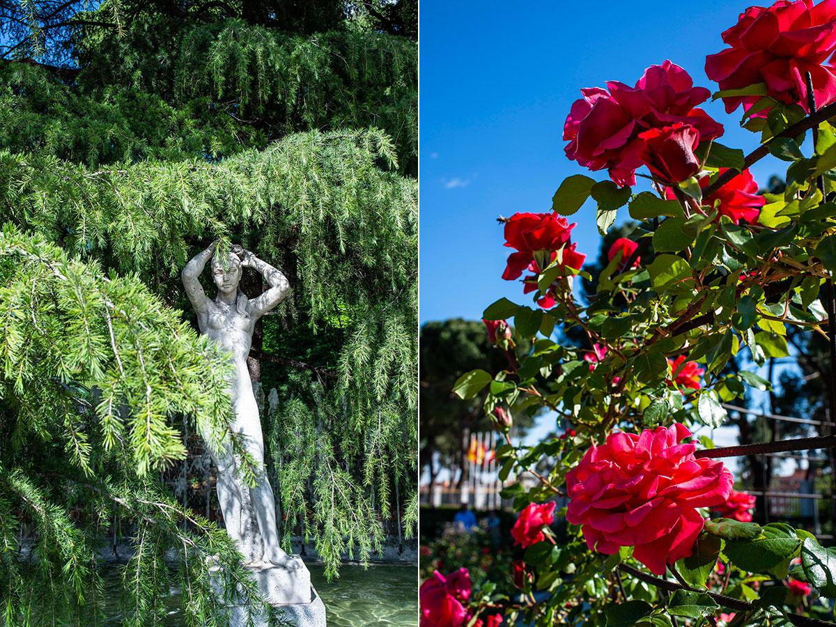 Una ninfa presiden el estanque de La Rosaleda del Parque del Oeste, en Madrid, rodeado de rosas.