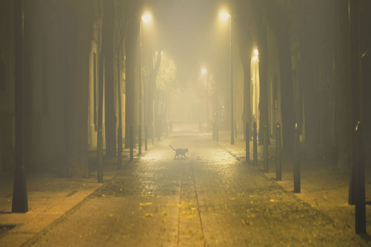 Calle con niebla.