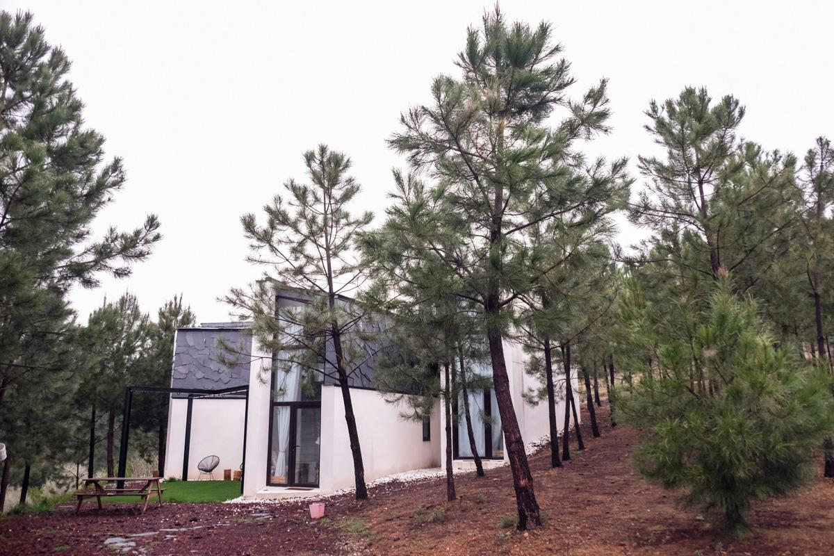El alojamiento está ubicado en medio de la naturaleza.