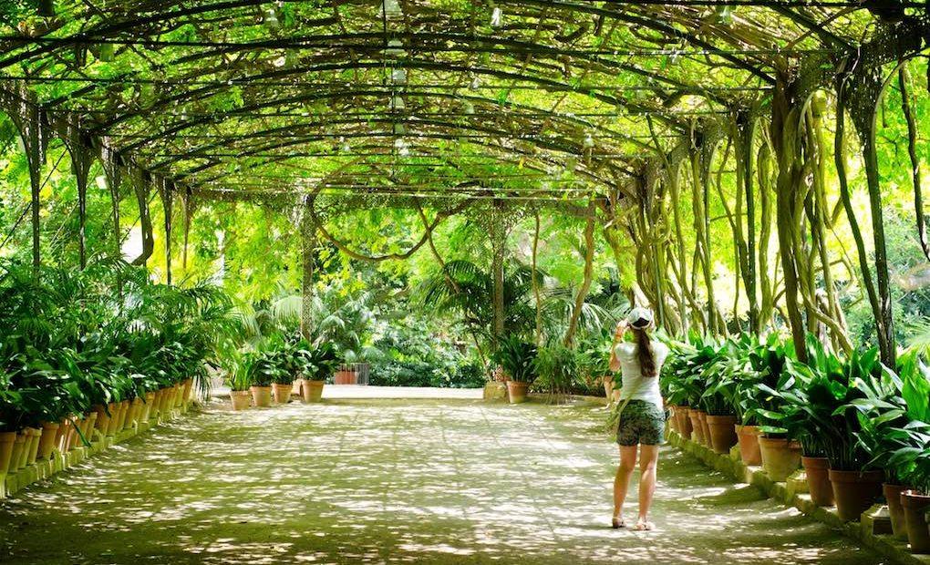 La Concepción Jardín Botánico Histórico de Málaga. Foto: Shutterstock.