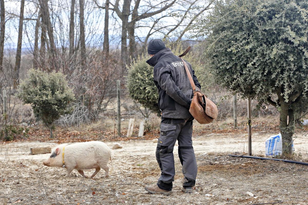 Javier López era jardinero y en 1992 viajó a Francia a conocer el negocio de las trufas.