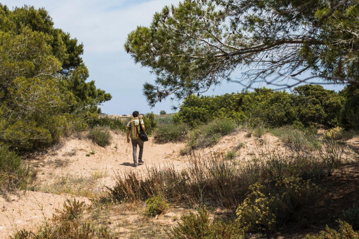 Un chico pasea entre los pinares y las dunas en El Saler (Parque Natural de La Albufera, Valencia).