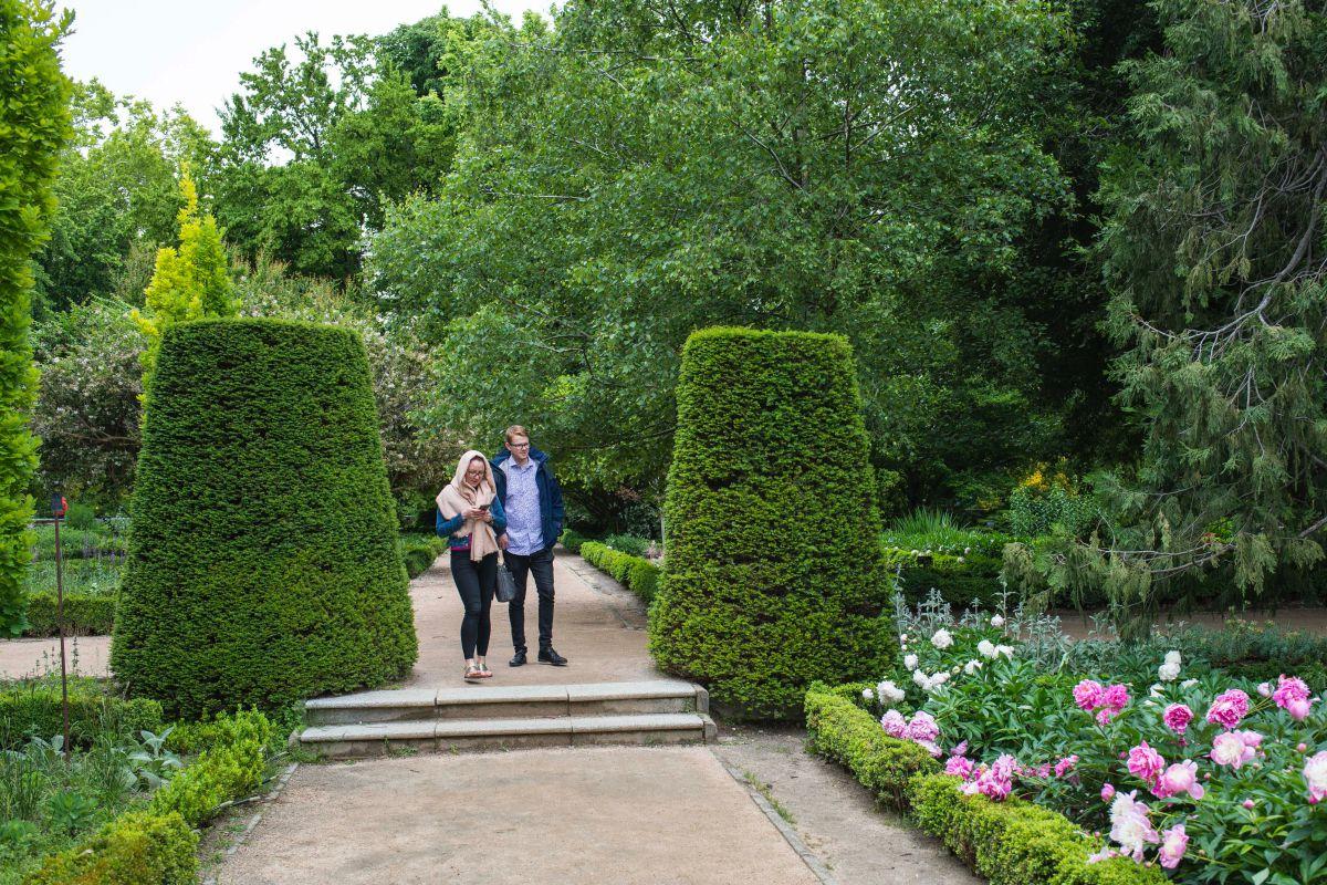 Una pareja pasea por el Real Jardín Botánico de Madrid.