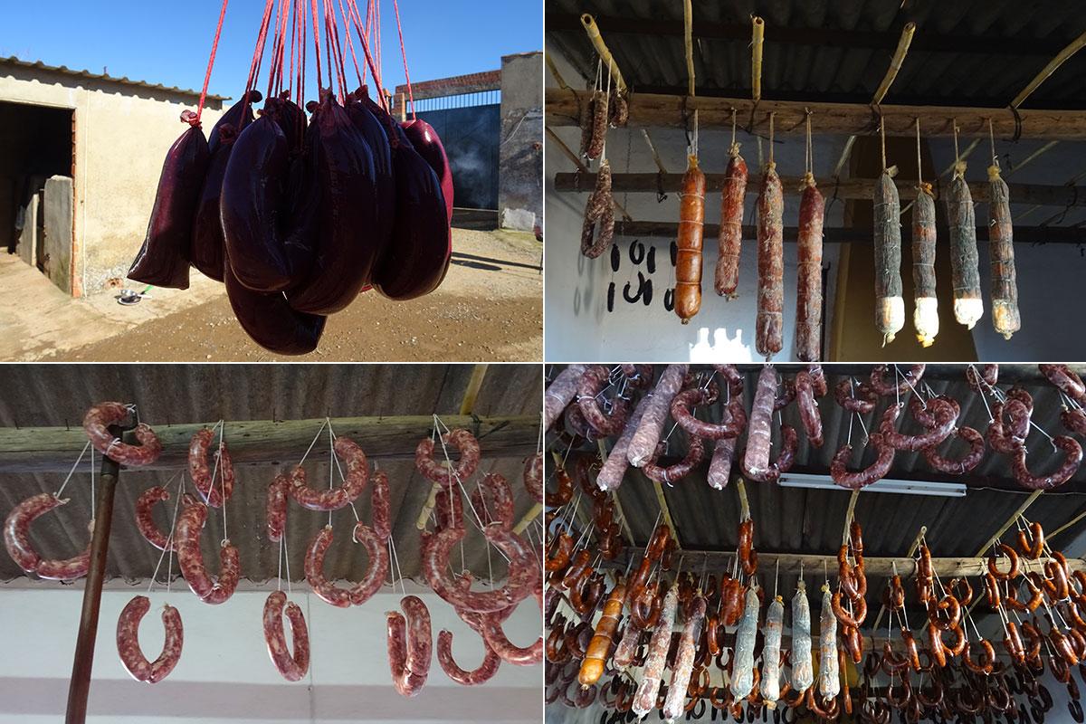 Chorizos, morcillas y salchichones cuelgan del techo secándose, el último paso de la matanza del cerdo ibérico en la comarca de Los Barros, Badajoz.