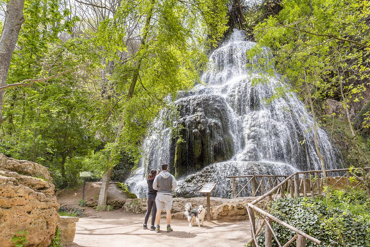 El parque admite la entrada de mascotas, siempre que vayan con correa.
