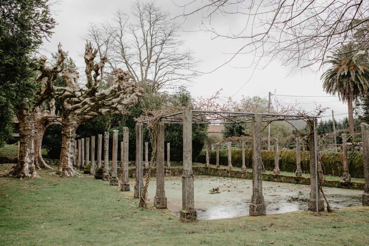 El estanque de verano del pazo de Rubianes, cubierto de lentejas de agua.