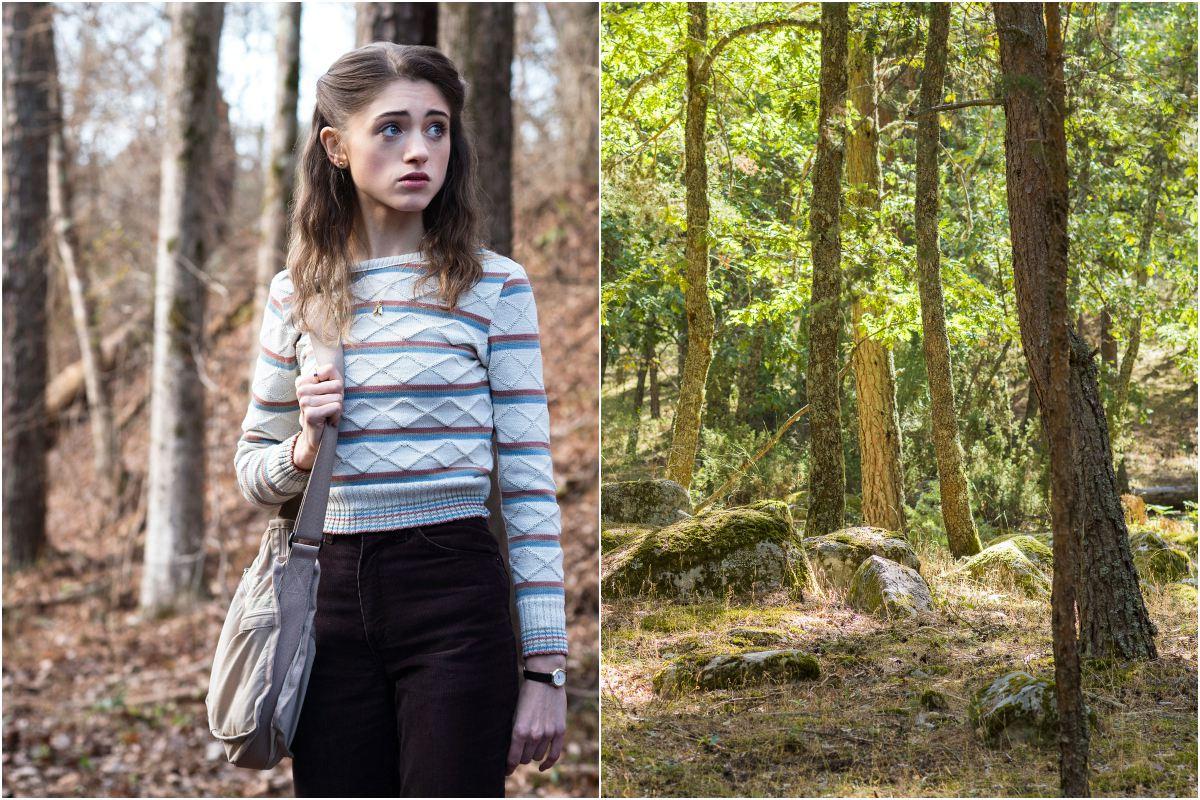 Los bosques por los que camina Nancy bien podrían ser los de Valsaín. Fotos: D.R. / Shutterstock.