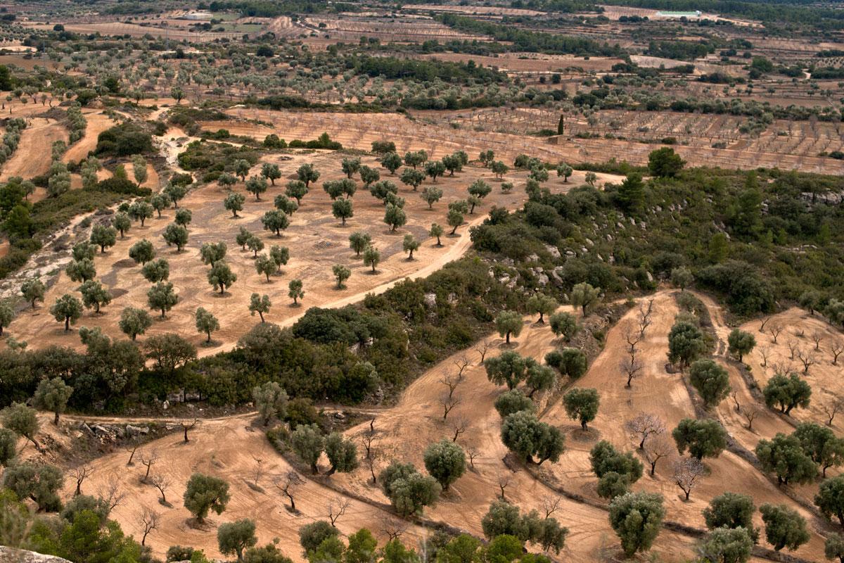 El paisaje se convierte en obra de arte en La Matarraña.