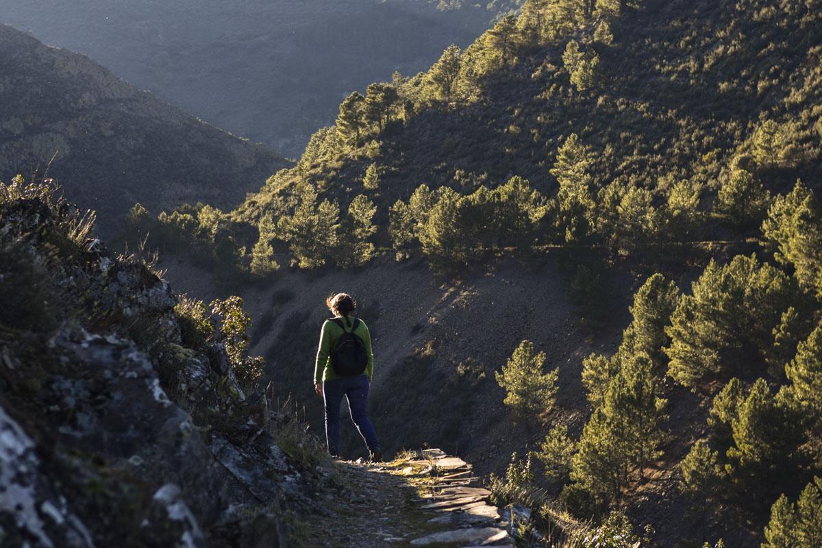 El senderismo en la región revela caminos increíbles como este de la Majá Robledo.