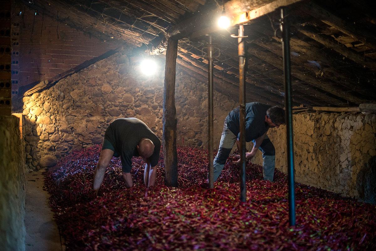 Los hermanos Peñalver dan la vuelta a los pimientos en el secadero.