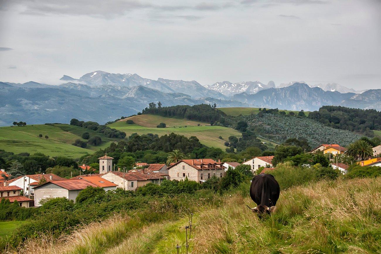 Los Picos de Europa desde el alto de Serdio