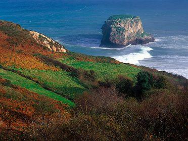 Faba Asturiana