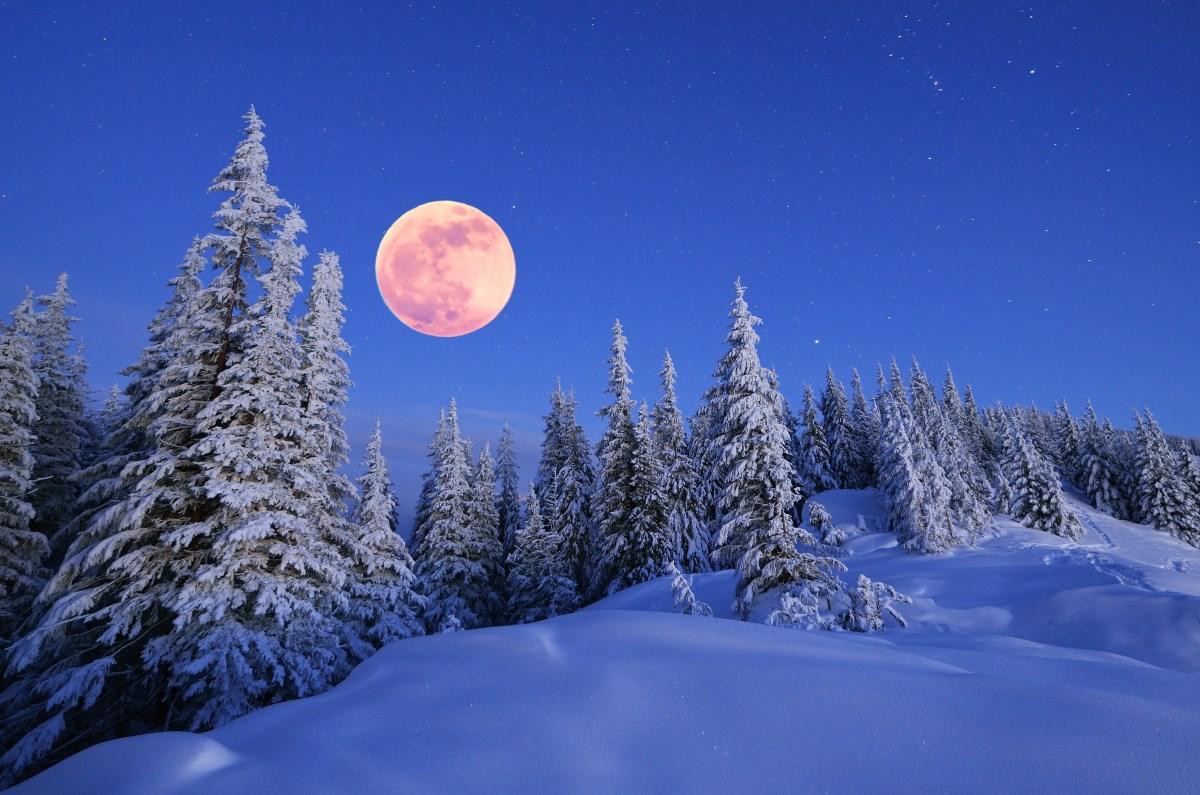 La Luna de las Nieves saldrá el 3 de marzo. Foto: Shutterstock.
