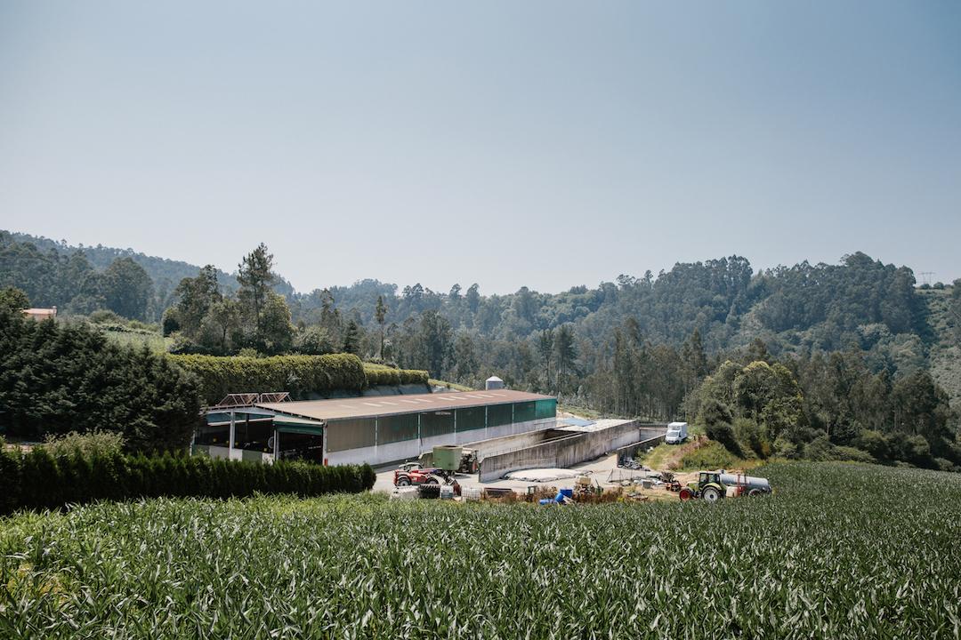 Granxa O Cancelo: una fábrica en un paisaje de cuento.