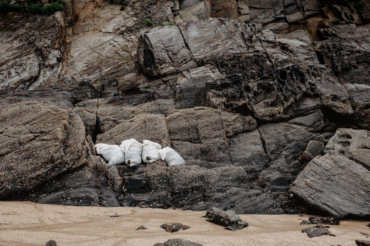 Algunos sacos de algas, ya en la playa, eperando para ser subidos a la furgoneta de Mar de Ardora, en Galicia.