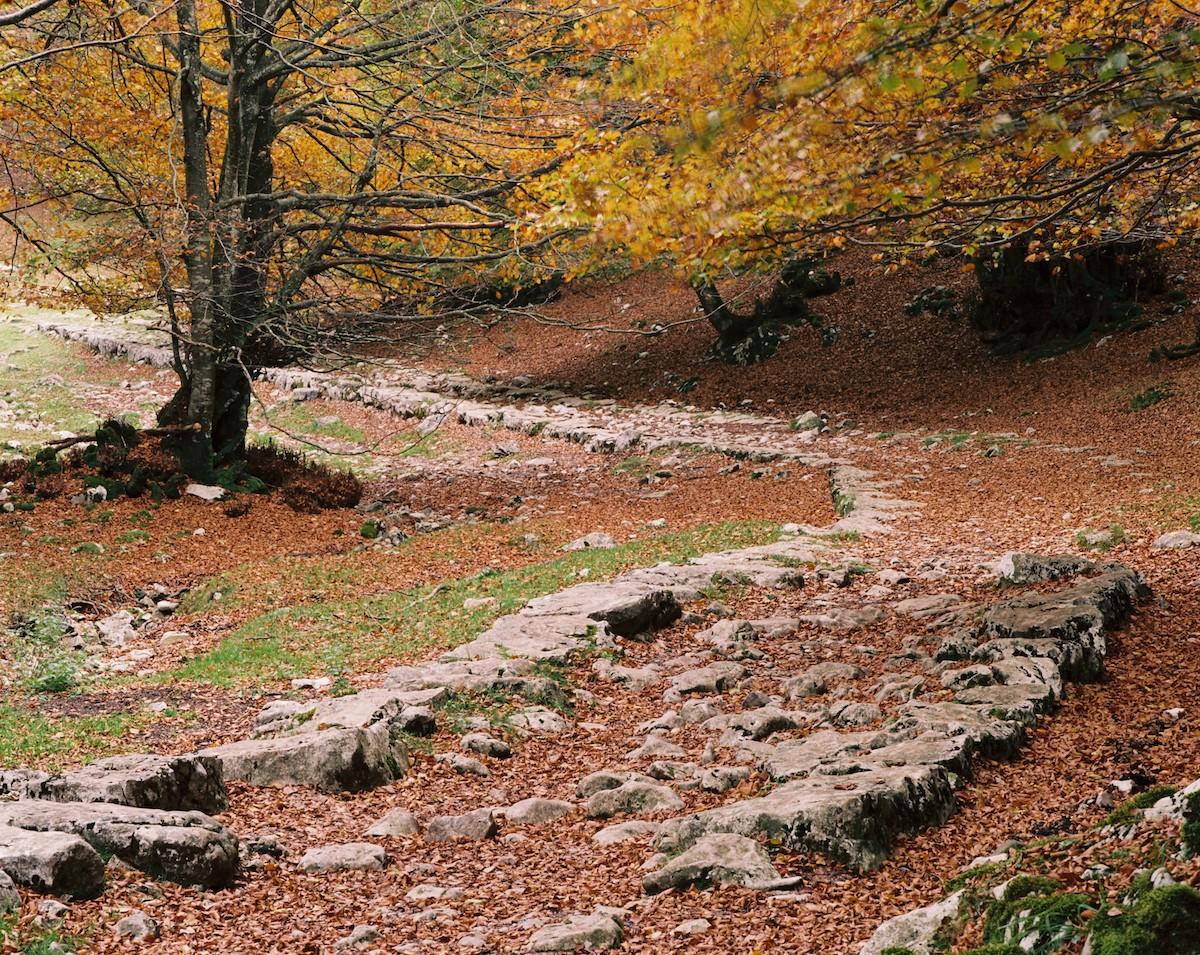 La calzada del siglo XI persiste a pesar de todo. Foto: Parque natural Aizkorri-Aratz.