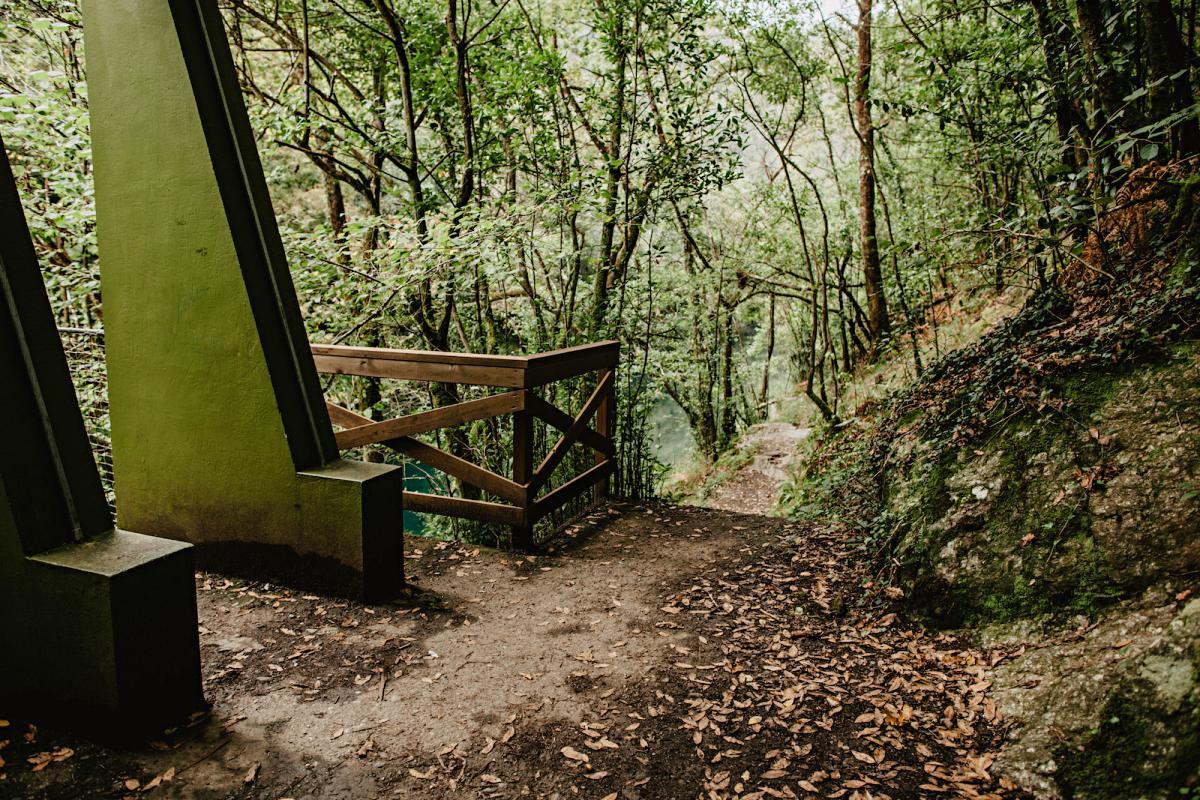 El camino de tierra que discurre en uno de los lados del río Eume, en el Camiño dos Encomendeiros.