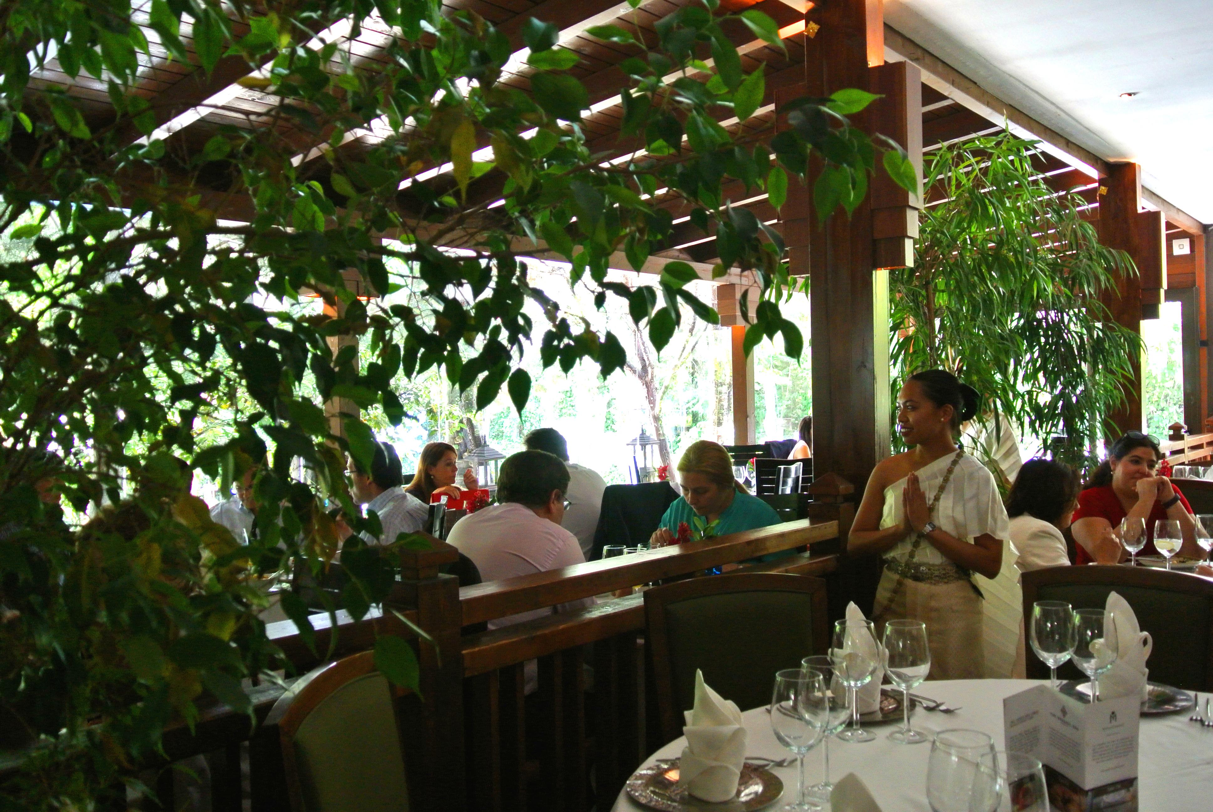 Degustar un menú en un exuberante jardín tailandés.