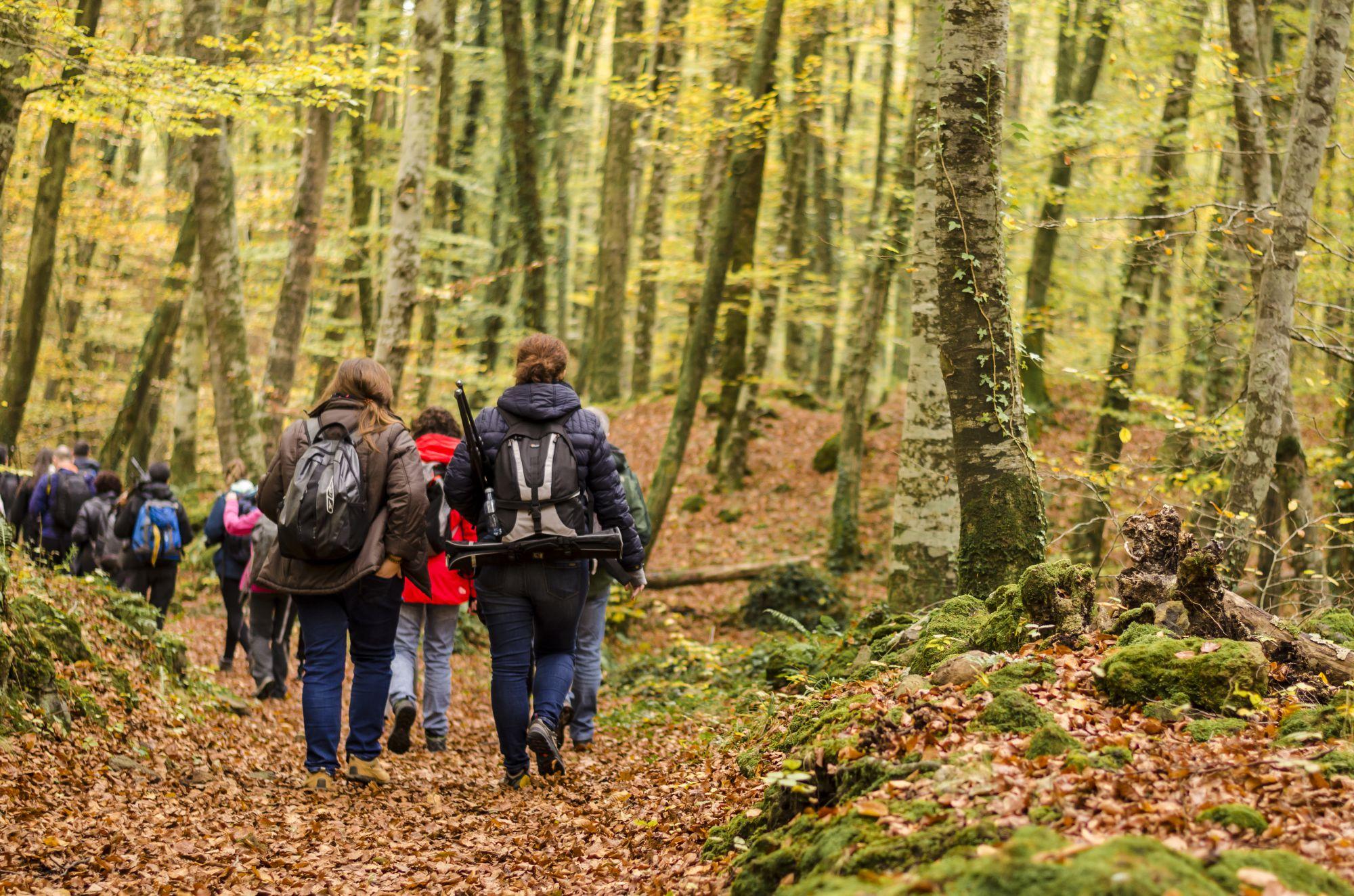 En el parque natural existen hasta 28 itinerarios a pie. Foto: Shutterstock.