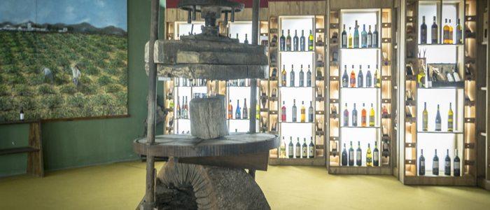 Museo de aceite de oliva.