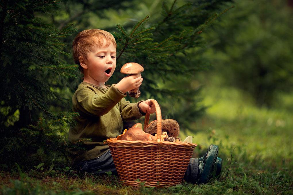 Las setas, un mundo sorprendente también para los peques. Foto: Shutterstock