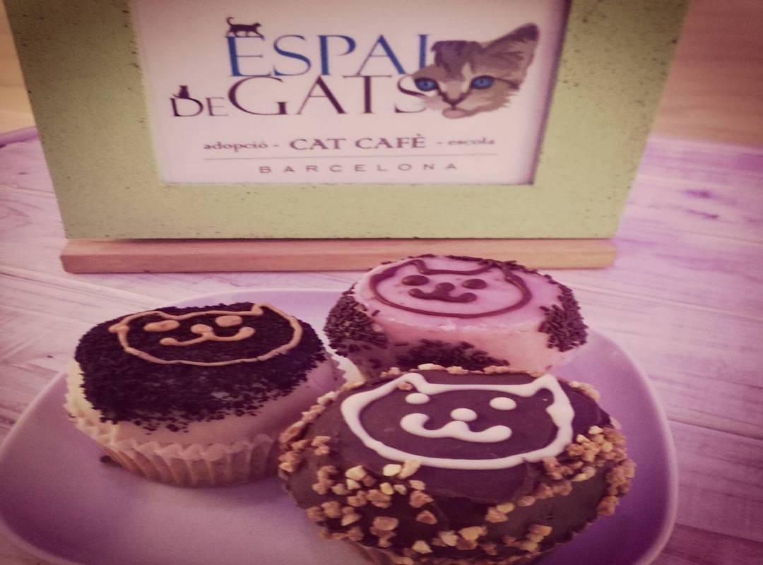 Un desayuno muy gatuno. Foto: Espai DeGats Cat Café.