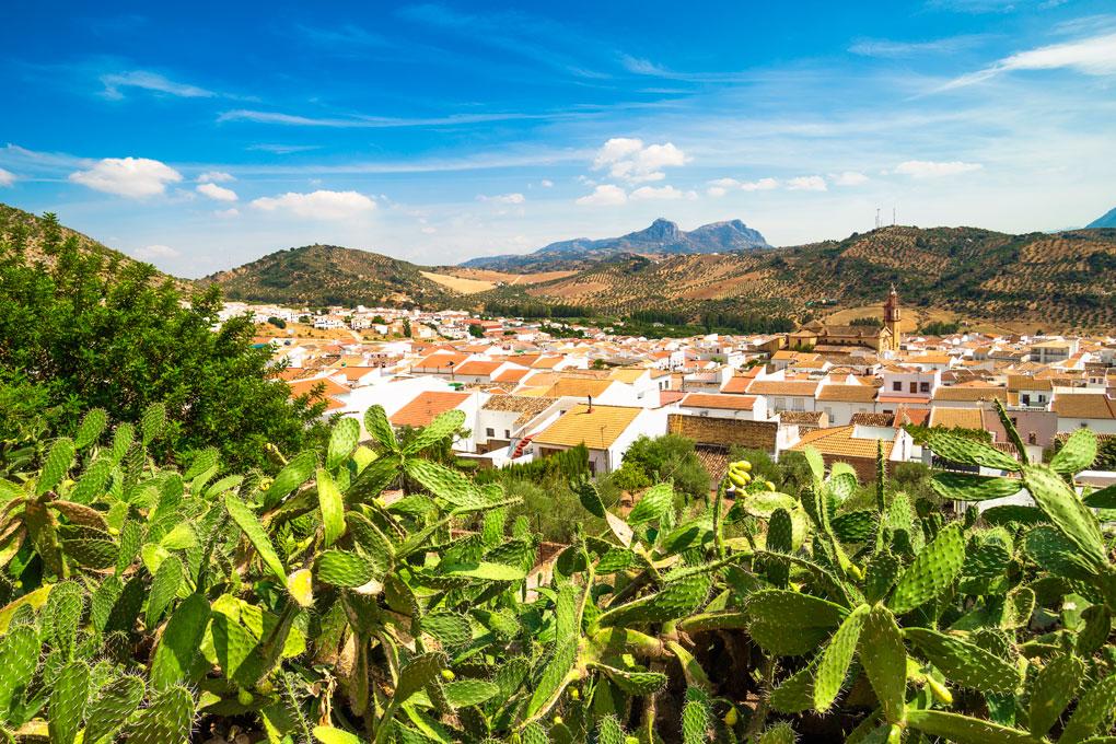 Vista del pueblo de Algodonales. Foto: Shutterstock.