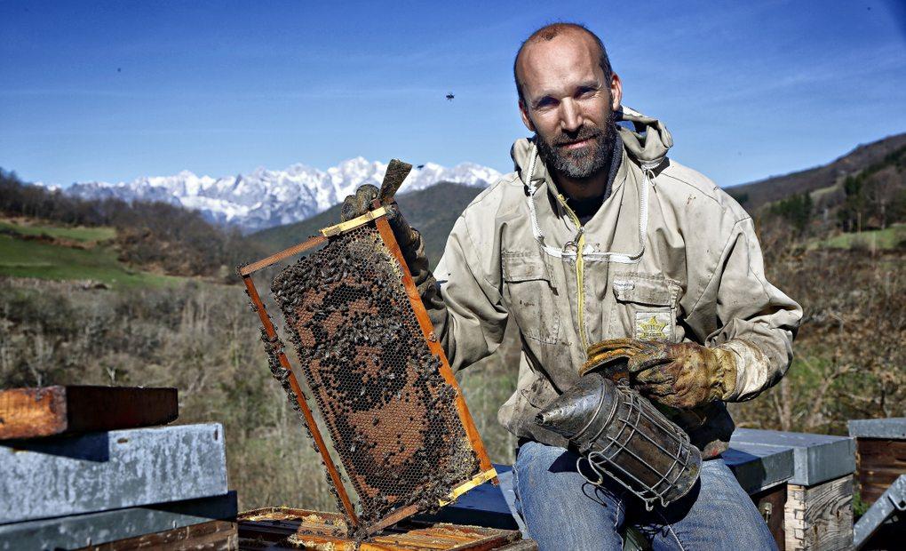 Rubén Varona, apicultor de Colmenares de Vendejo, sujetando un panal de abejas