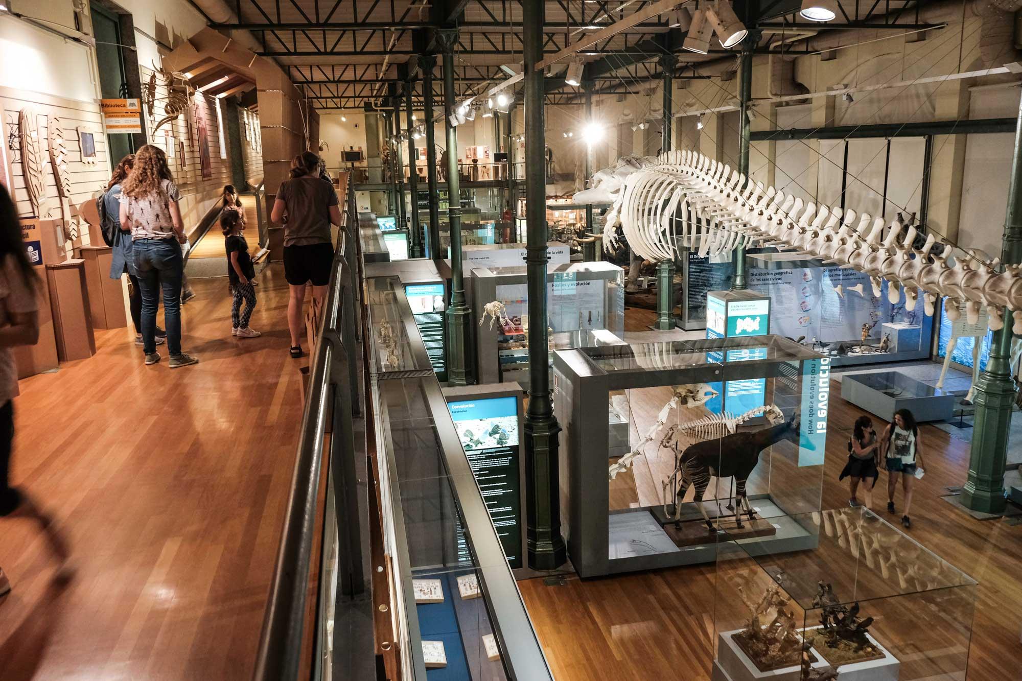Después de haber visto 'Noche en el Museo', ¿quién no quiere pasar una noche aquí?