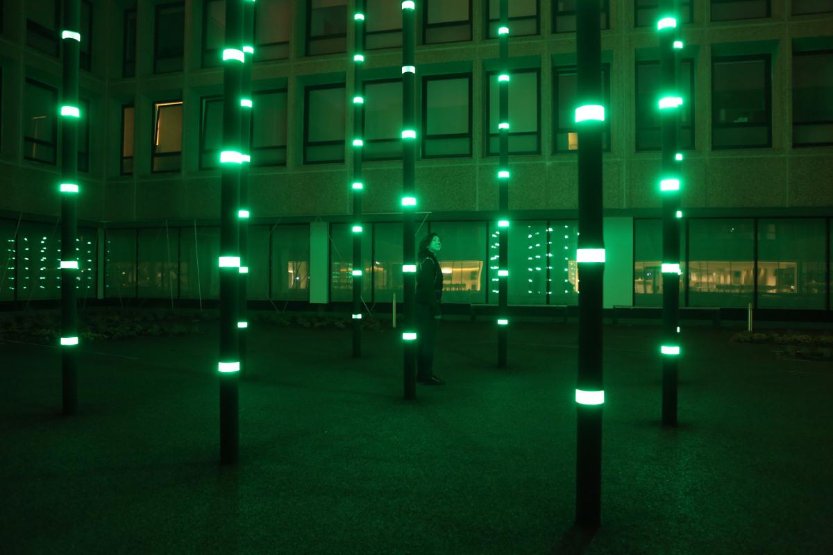 Diseño de Roosegaarde aplicado a la iluminación urbana. Foto: Estudio Roosegaarde.