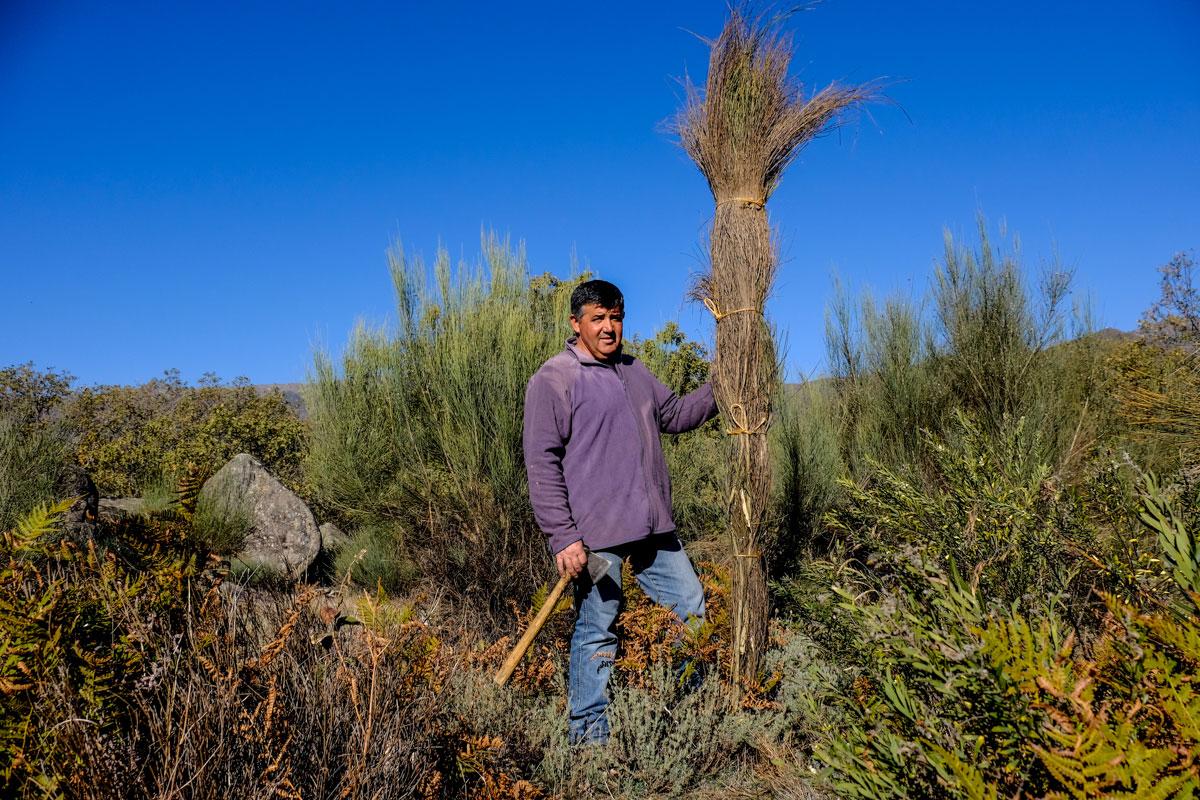 Eulogio Gutiérrez sujeta un escobón recién hecho para la noche del 7 de diciembre.