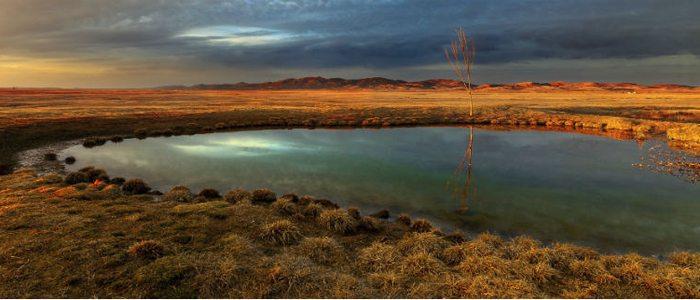 Laguna Gallocanta, un paraíso para las aves.