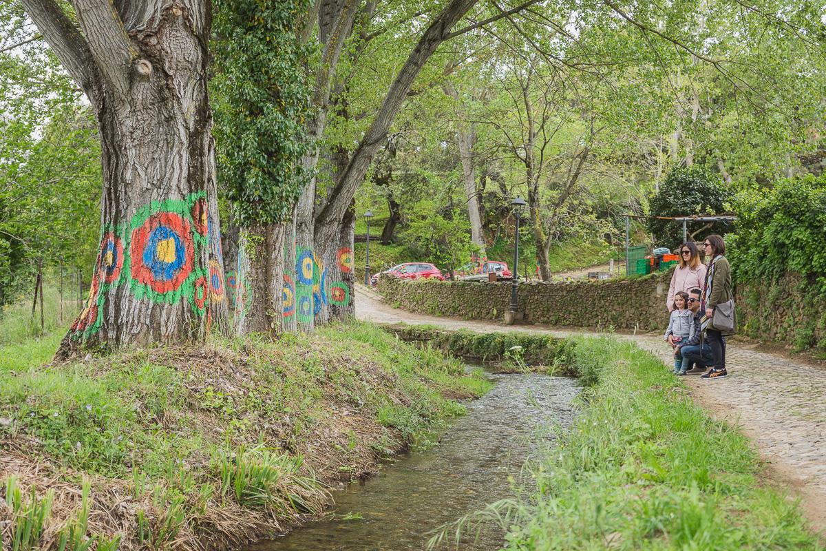 Linares de la Sierra- Bosque