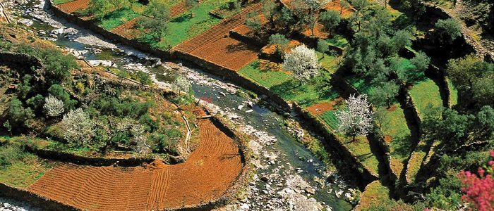 Río Malvellido a su paso por Nuñomoral.