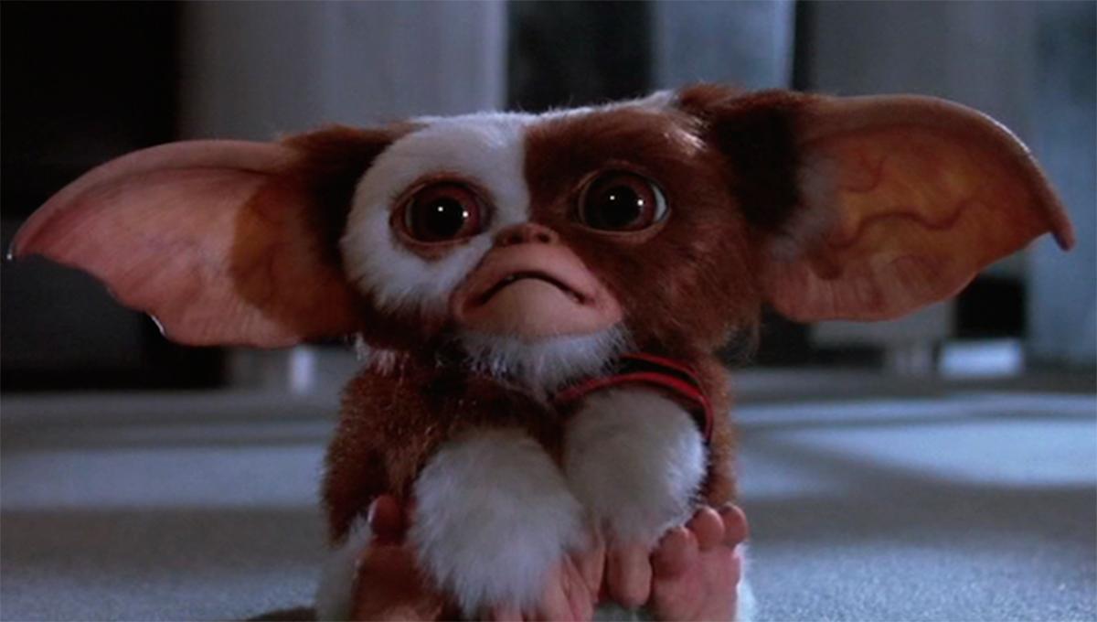 La película 'Gremlins' se reestrena esta Navidad.