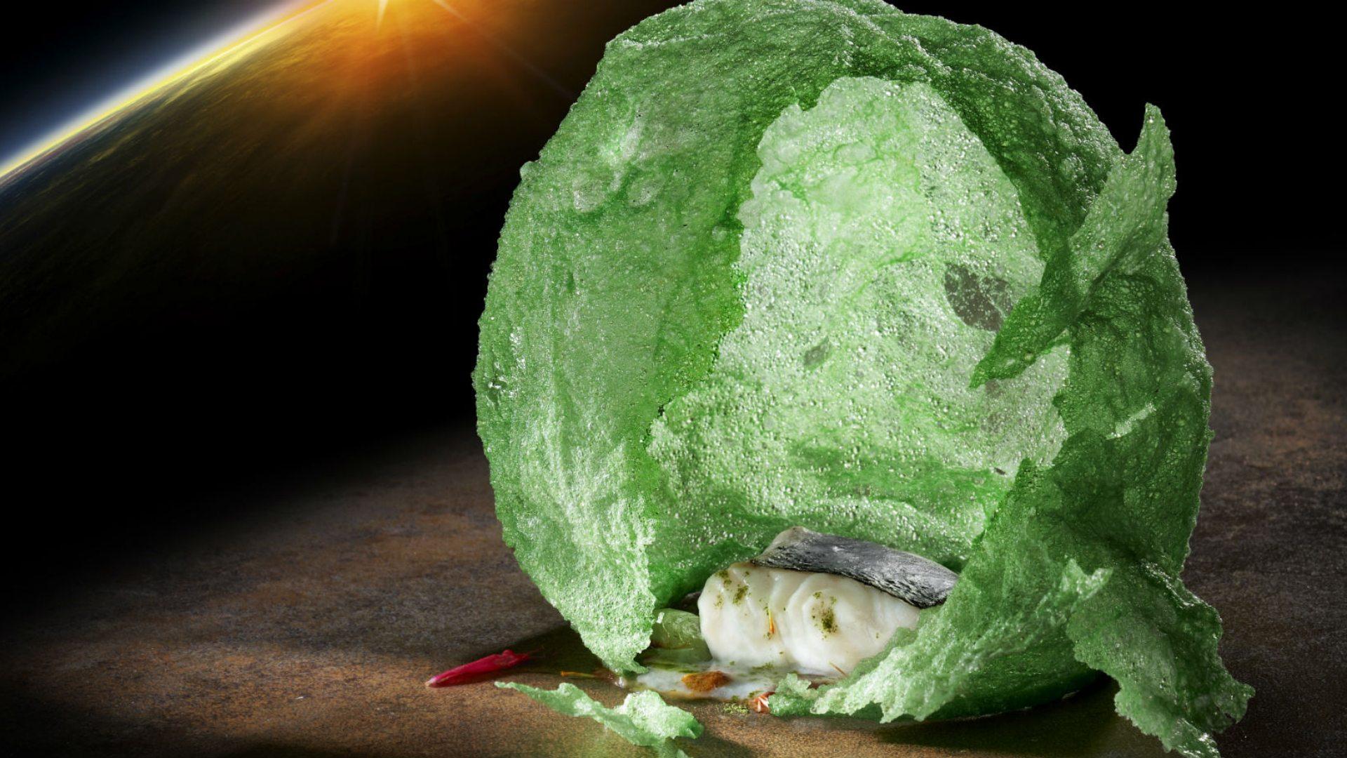 Plato estrella: Merluza pitonisa verde