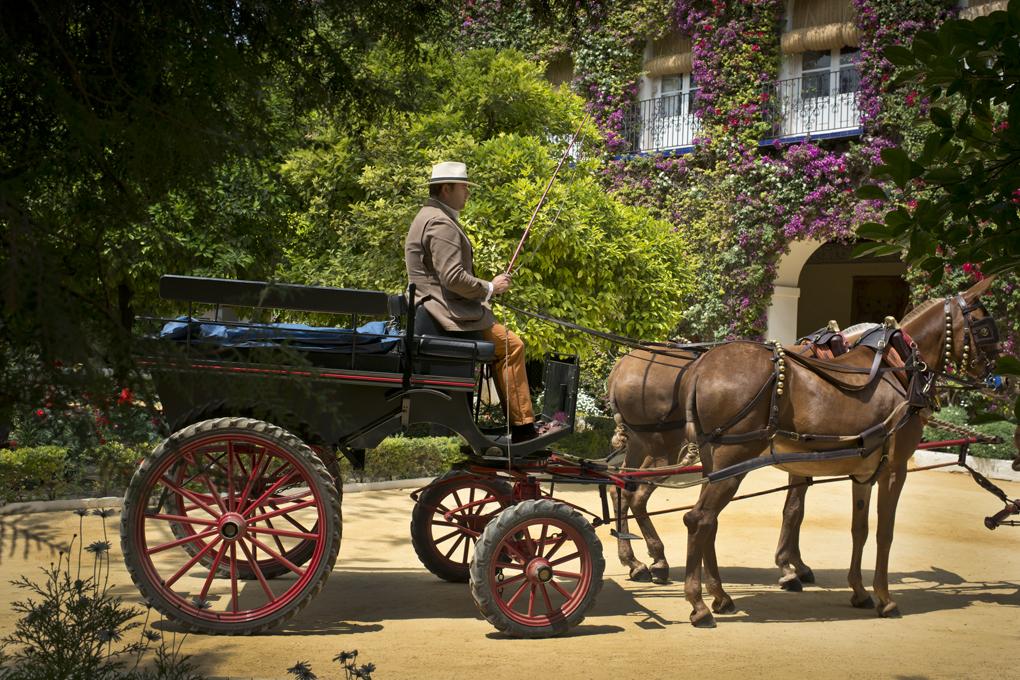 La calesa con las mulas alazanas que los Alba utilizan en eventos como La Feria.