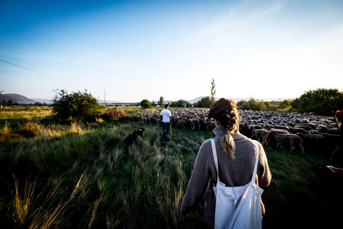Experimentando uno de los oficios más sacrificados del medio rural. Foto: Shutterstock.